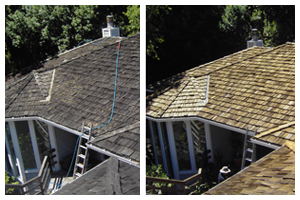 Roof Cleaning & Repair
